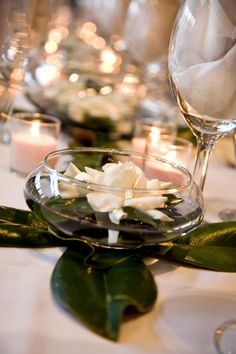 Post Feeds Great for visiting to our site. You are nice to have a look to Magnolia Wedding Decorations. This amazing Magnolia Wedding Decorations will. Floating Flower Centerpieces, Floating Flowers, Table Centerpieces, Wedding Centerpieces, Wedding Table, Wedding Decorations, Table Decorations, Wedding Ideas, Wedding Inspiration