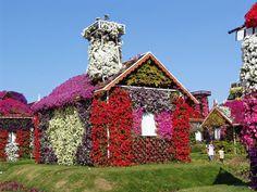 CCB  Hinos cantados um e um jardim maravilhoso
