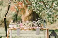 Fairytale, Bloom, Table Decorations, Spring, Modern, Wedding, Furniture, Home Decor, Fairy Tail