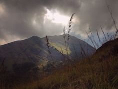 Heavens fall here! - Chembra Peak at Wayanad, Kerala