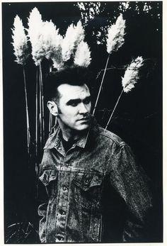Anton Corbijn. Morrissey.