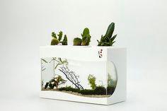 Hoi! Ik heb een geweldige listing gevonden op Etsy https://www.etsy.com/nl/listing/180480670/aquatic-world-ii-aquarium-planter-no-led