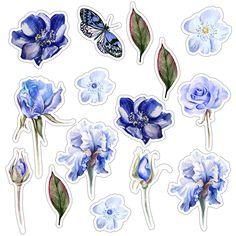 Цветы высечки