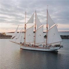 """The three-masted schooner """"Linden"""" was launched in 1992 and is feet) LOA. Big Yachts, Adventure Of The Seas, Old Boats, Yacht For Sale, Speed Boats, Wooden Boats, Tall Ships, Water Crafts, Sailing Ships"""