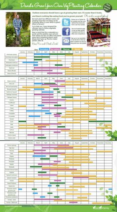 Make veg growing easy! David Domoney's complete vegetable calendar. Handy visual guide showing when to sow, plant out and harvest any vegetable crop.