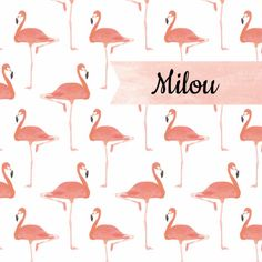 Geboortekaartje voor een meisje met patroon van flamingo's, verkrijgbaar bij #kaartje2go voor €1,89