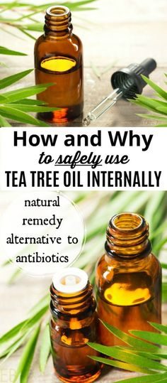 Tea tree essential oil is a valuable anti-viral, anti-bacterial, anti-fungal and first aid tool. We'll talk about the risks, the benefits, how to use tea tree oil safely and in what health situations tea tree oil may be a more useful remedy than other alternatives. #teatreeoil #teatree #essentialoils #diyremedy #holistic