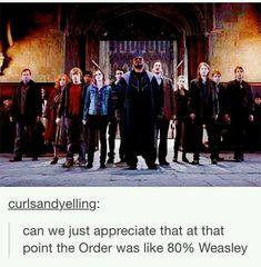 Find images and videos about harry potter, hp and weasley on We Heart It - the app to get lost in what you love. Images Harry Potter, Harry Potter Jokes, Harry Potter Fandom, Harry Potter World, Hogwarts, Must Be A Weasley, Ron Weasley, Weasley Twins, Yer A Wizard Harry