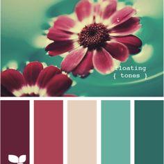 Additional Color palette