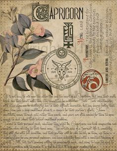 Capricorn Zodiac Sign 5 7 pages set about CAPRICORN Astrological Sign Correspondences. They are an ideal addition to your own Wicca Book of Shadows. Zodiac Capricorn, Horoscope, Magic Herbs, Herbal Magic, Astrology Signs, Zodiac Signs, Astrological Sign, Astrology Planets, Astrology Numerology