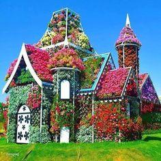 Selection: Green Roof - Home and Garden (Dubai Miracle Garden Flowers Hut) Love Garden, Dream Garden, Garden Art, Garden Design, Beautiful Gardens, Beautiful Flowers, Beautiful Places, Montreal Botanical Garden, Miracle Garden