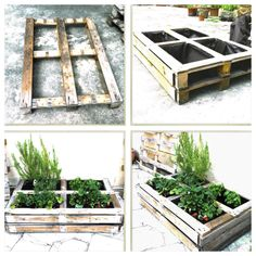 Recycled wooden pallet garden. Pequeña jardinera hecha con palets de madera…