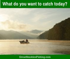1000 images about fishing on pinterest fly fishing for Fly fishing spots near me