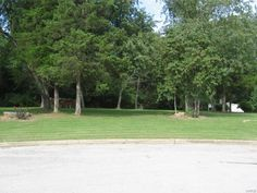 Beautiful lot in upscale subdivision. Backs to wooded private property. Amazing sunset view of the neighbor's pasture. City water, city sewer and electric already there. Mature shade trees to perfectly shade your dream home. Lot is at the back of the subdivision in a cul-de-sac in Salem MO