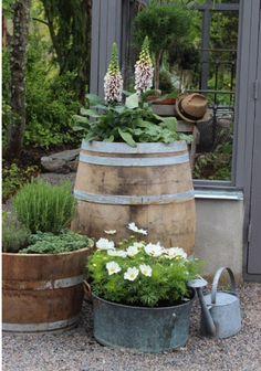 Rustic Garden Decor, Rustic Gardens, Outdoor Gardens, Roof Gardens, Garden Cottage, Garden Planters, Greenhouse Gardening, Garden Beds, Kitchen Gardening