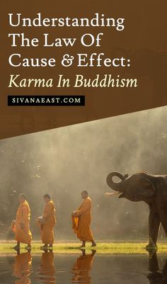 cause and effect of religion