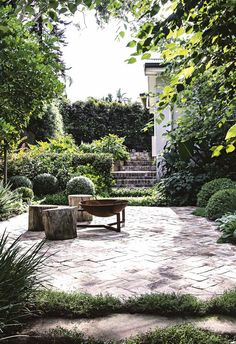 A multi-layered approach combines clever planting, a vegie patch and a designer eye to form the perfect family hangout. Lush Garden, Garden Pool, Succulent Planters, Hanging Planters, Succulents Garden, Back Gardens, Outdoor Gardens, Most Beautiful Gardens, Fire Pit Area