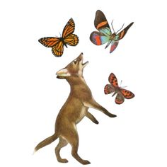 Cute Animal Art, Fox Wall Decor, Butterfly Gift, Whimsical Fox Wall... ($20) ❤ liked on Polyvore featuring home, home decor, wall art, fox home decor, butterfly home decor, animal wall art, fox wall art and butterfly wall art