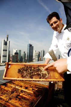 Jumeirah Frankfurt - Skyline Bees
