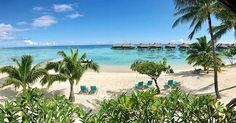 Breakfast views today could not be more perfect, breathtaking French Polynesia! 🌴🍳☕️🍍☀️#hiltonmoorea #travelgram #potd #paradise #oceanviews #breakfast #travelphotography #beachadventures #islandhappiness #sunny #bucketlistdreamscometrue #vacationheaven #moorea #frenchpolynesia #overwater #bungalows #beach #perfection #brathingitallin #nature #reefs #corals #snorkle #epic by carpebellavitam. islandhappiness #sunny #beach #reefs #overwater #bungalows #epic #snorkle #vacationheaven…