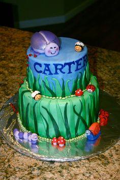 Bug Birthday Cake ideas # The Cake Construction