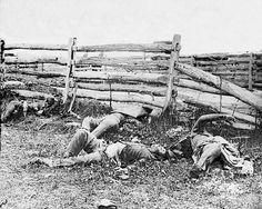 Civil War photo of dead soldiers of the Louisiana Regiment at Antietam, Maryland. This is one of the photographic images that were put on display in NYC by the Mathew Brady Studio. It was the first time that most people saw the horrors of war. by Alexander Gardner, The Brady Studio. September 1862