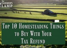 Top 10 Homesteading Things To Buy With Your Tax Refund