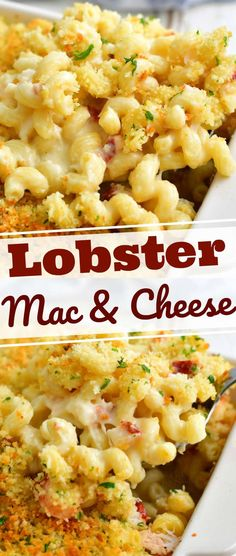 Lobster mac and cheese is a decadent, comforting dinner featuring lots of lobster meat mixed with creamy macaroni and cheese. Lobster Mac N Cheese Recipe, Seafood Mac And Cheese, Baked Mac And Cheese Recipe, Creamy Macaroni And Cheese, Best Mac And Cheese, Lobster Recipes, Seafood Recipes, Pasta Recipes, Cooking Recipes