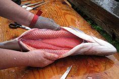 Нежная малосоленая горбуша — готовится очень быстро и можно кушать уже через час!   Самые вкусные кулинарные рецепты