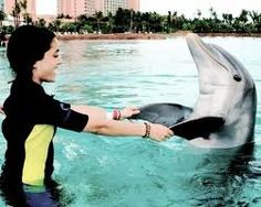 Ariana swimming with dolphin.