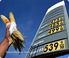 U.S. food prices up 19 percent in 2014. THIS IS THEIR PLAN--A ROTHSCHILD AGENDA. ARREST YOUR REPRESENTATIVE! http://www.naturalnews.com/044711_increasing_food_prices_California_drought_subsidized_crops.html