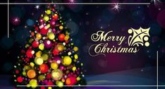 Merry Christmas Greetings Greetings Christmas Greetings,Merry Christmas Wishes Happy Christmas Day Images, Christmas Pictures Free, Christmas Abbott, Merry Christmas Greetings, Merry Xmas, Christmas 2019, Christmas Images For Facebook, Christmas Lights, Christmas Jesus
