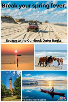 Celebrate Spring break and Easter with off-season savings on the Currituck Outer Banks in North Carolina. Bring your family, friends to one of the best beach vacation travel destinations on the East Coast. Kayak or paddle board on the Currituck Sound. Vacation Places, Vacation Destinations, Vacation Trips, Vacation Spots, Places To Travel, Places To See, Vacation Travel, Vacation Ideas, Family Travel