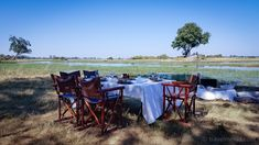Little Mombo Camp is the flagship camp of renowned safari operator Wilderness Safaris. The pinnacle of places to camp out in when in Botswana. Safari, Okavango Delta, Game Reserve, Camps, Wilderness, Tent, Africa, Horses, Places