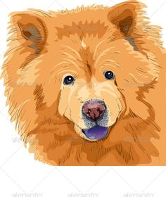 Vector Color Sketch of a Dog Chow-Chow Breed #GraphicRiver Color sketch close-up portrait of a dog chow-chow breed isolated on the white background. More dogs of different breeds for you: Created: 18December11 GraphicsFilesIncluded: JPGImage #VectorEPS Layered: Yes MinimumAdobeCSVersion: CS Tags: animal #big #breed #chow #chow-chow #closeup #dog #drawing #eyes #funny #fur #furry #hair #happy #isolated #long #pedigreed #pet #powerful #protruding #purebred #red #shaggy #sketch #thick…