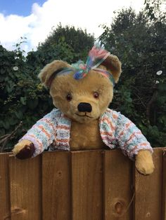 ~ Cilla! Old Mystery English? Irish? Teddy Bear (Antique Vintage Mohair Growler)…