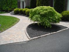 sidewalk ideas | beautifully landscaped formal entrance mulched bed with landscape ...