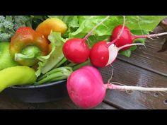 Garden Impressions Hangmat Tubular Met Standaard.The 15 Best Garden Images On Pinterest Growing Vegetables