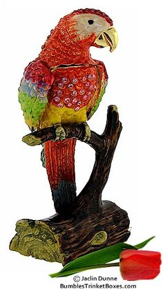 Trinket Box: Red Parrot Box