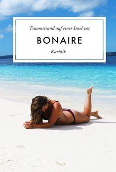 Bonaire: Das noch unbekannte Paradies in der Karibik Traveldiary | Caribbean Beach | Island | What to do on Bonaire | Paradise | Explore the World | TUI Cruise with Mein Schiff 5 | Scuba Dive | Snorkeling