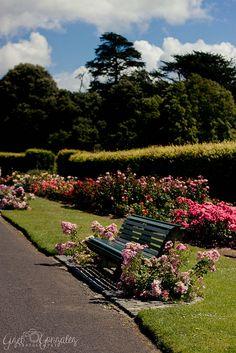 St. Anne's Park, Dublin, Ireland, via Flickr.