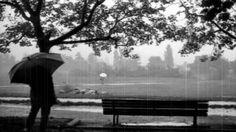 Rene Aubry ~ apres la pluie II