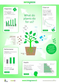 What do plants for us?