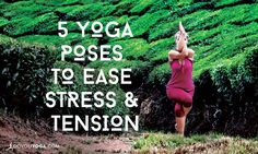 While yoga in general has a calming influence, certain yoga poses have a super awesome ability to help us let go of tension and stress. Check these out.
