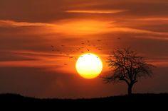 Több megyében nagy melegre figyelmeztetnek - Időjárás - Kiderul.hu