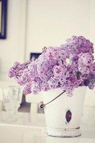 centre de table dans un seau en zinc #violet