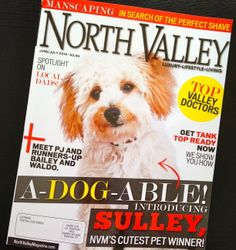 The June/July '14 cover of North Valley Magazine Produced by The Media Barr www.northvalleymagazine.com
