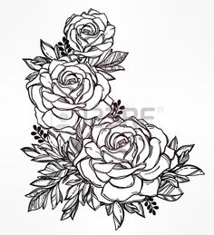 Vintage main tr s d taill e floral dessin rose tige de la fleur de roses et de feuilles Motif victor Banque d'images