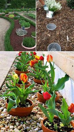 49 simple, easy and cheap diy garden landscaping ideas 25 - DIY Garten Landschaftsbau Garden Yard Ideas, Easy Garden, Lawn And Garden, Garden Projects, Garden Pots, Backyard Ideas, Diy Garden Ideas On A Budget, Simple Garden Ideas, Cheap Garden Ideas