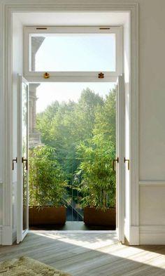 Doors, plants on the terrace